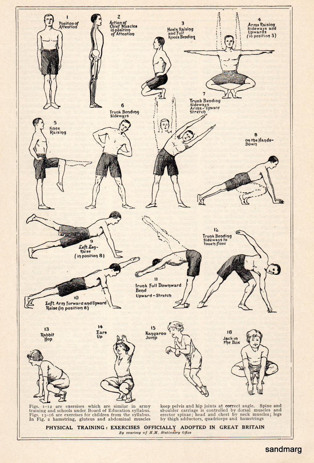 bodybuilding exercises chart for menfun and fitness chart exercises for good health by sandmarg jpg ansel adams wilderness 7 1600